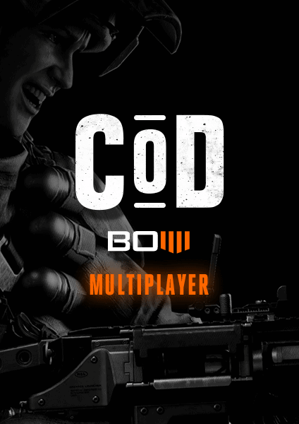 COD BO4 multiplayer recovery
